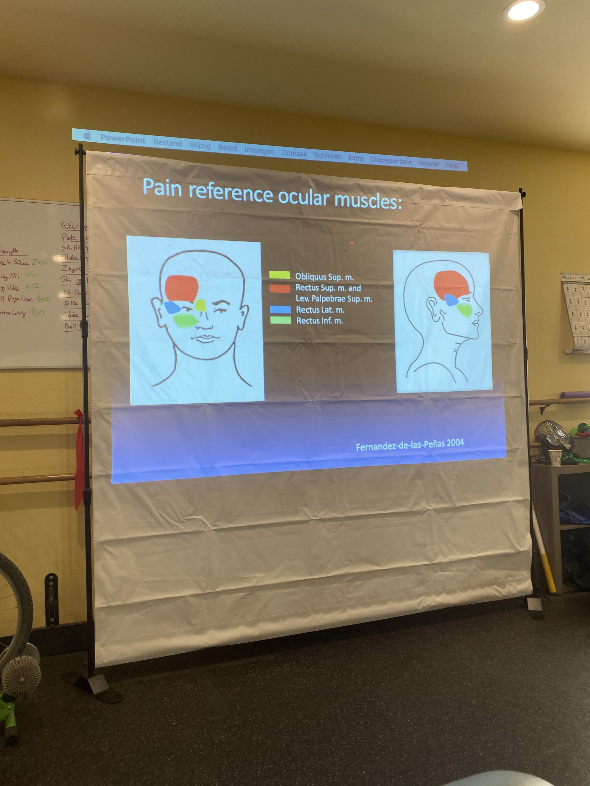 TMJ Courses for Physical Therapists | Inside look at TMD ...